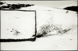 square field