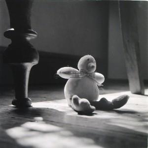 2218 lost duckling